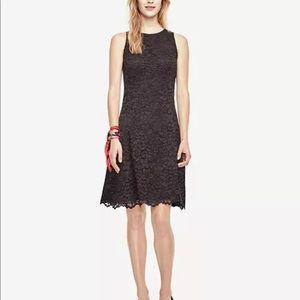 Ann Taylor Lace Flare Dress